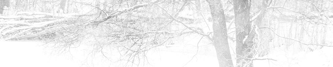 Grounds Maintenance: Winter